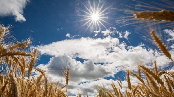 foto pogoda v ukraine rect ddfbd8d7a310f6bfc917f14f76b8ff59
