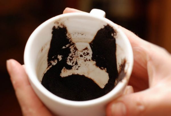 kofe guscha