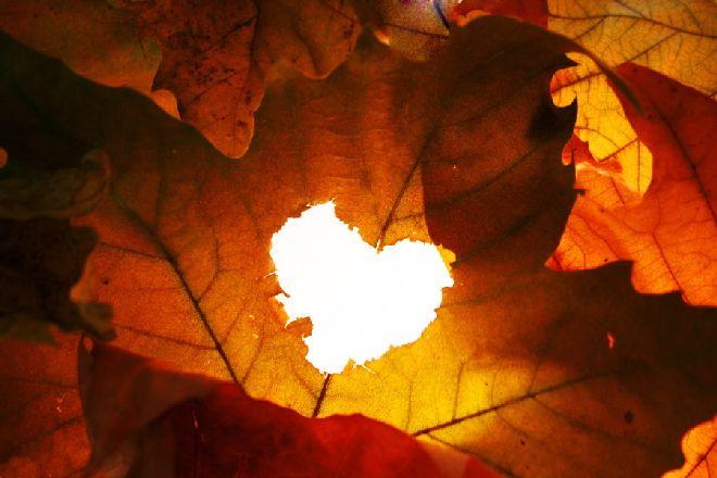 Картинки по запросу Любовный гороскоп на октябрь 2019 года