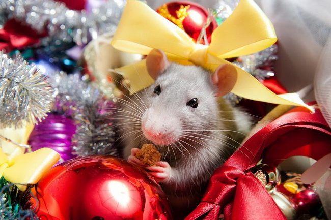 Новый год 2020 — год металлической крысы