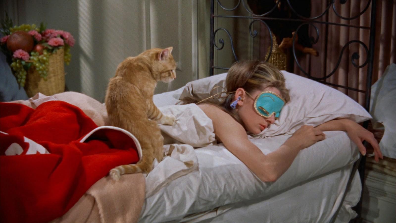 """Картинки по запросу """"Вот как вы спите, если верить вашему знаку Зодиака"""""""